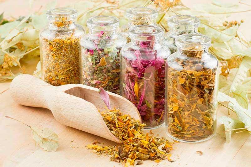 Лечение аллергии народными средствами, рецепты