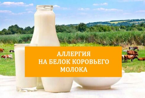 аллергия на белок коровьего молока