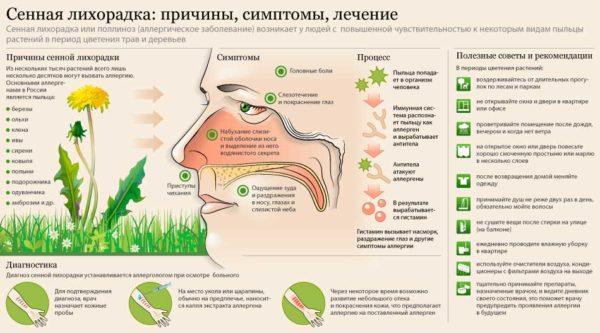 Капли в нос от аллергии, список, правила приема