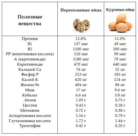 Полезные свойства перепелиных и куриных яиц