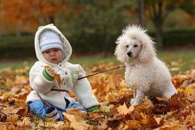 Прогулка с ребенком на природе