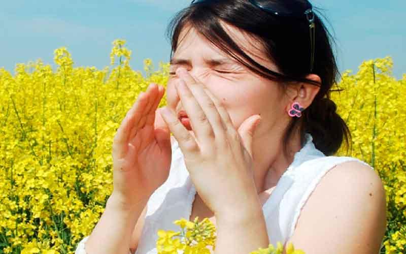 Аллергия на цветение, что делать?