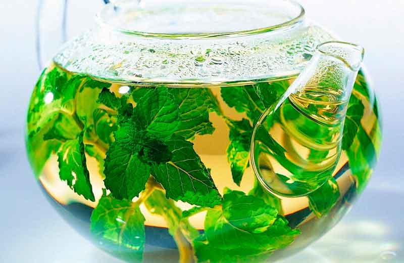 Аллергия на чай, симптомы, лечение