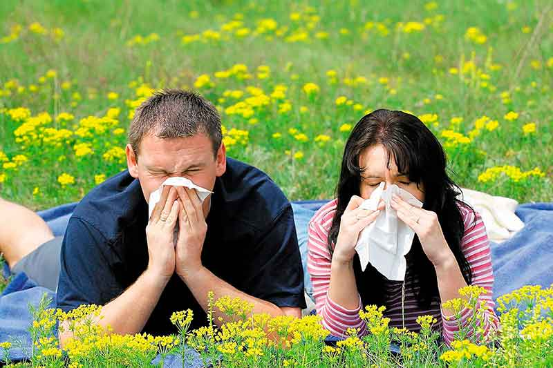 Что такое аутоаллергия и можно ли вылечить данное заболевание