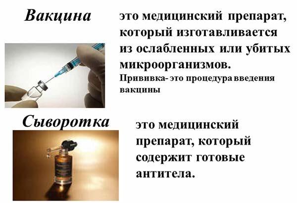 Типы аллергии, механизм действия, клинические проявления