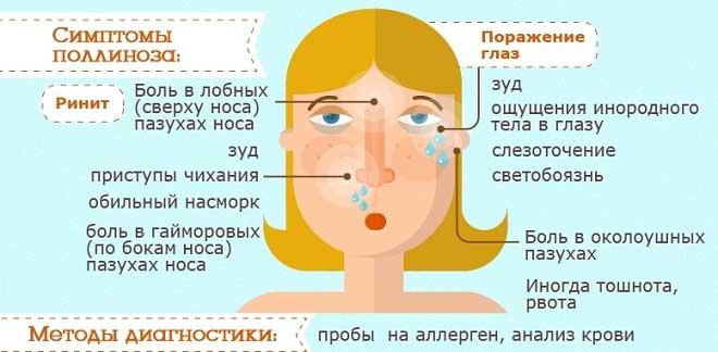 Аллергия на лебеду, симптомы, лечение, календарь цветения