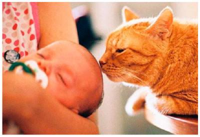 постепенной выработкой особых иммунных клеток у ребенка