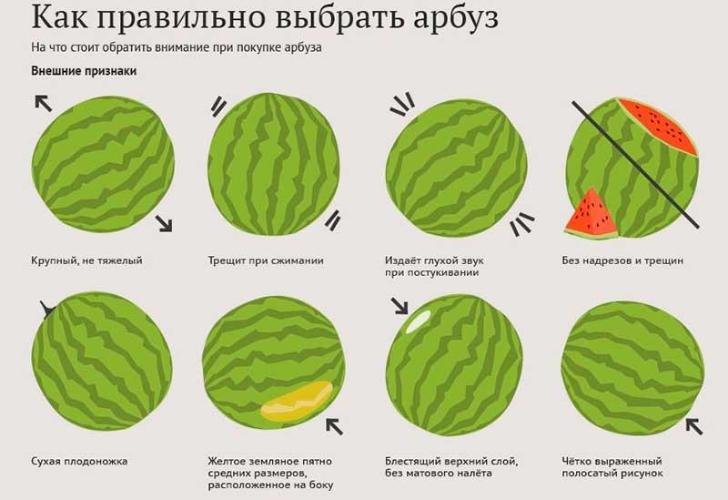 аллергия на ягоды у взрослых
